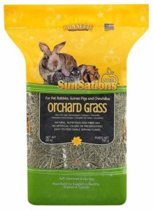Orchard Grass for Chinchillas